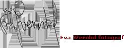 Eva Wernlid